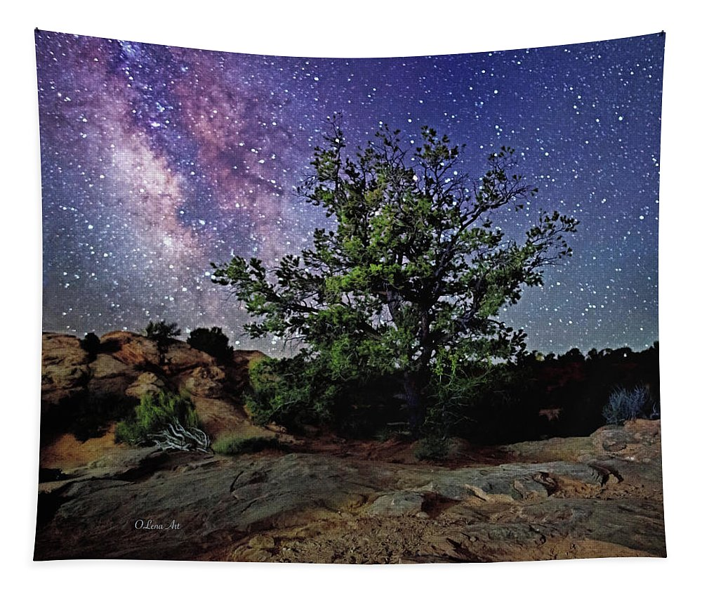 Night Sky Tapestry featuring the photograph Sweet Dreams by OLena Art Brand