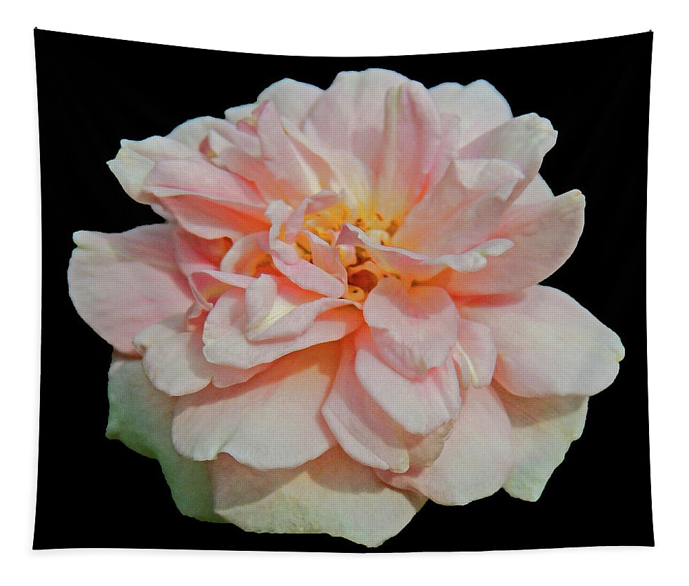 Photographic Print Tapestry featuring the photograph Sweetheart Rose by Marian Bell