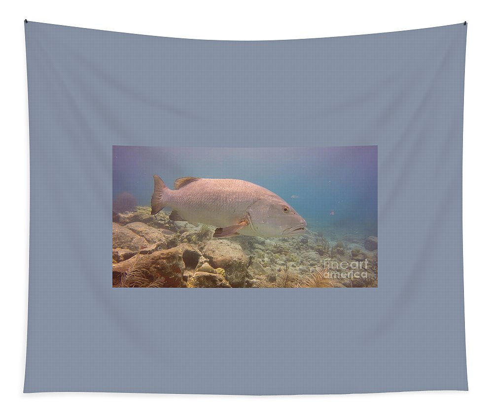 Coral Tapestry featuring the photograph Swimming Right Along by Gina Sullivan