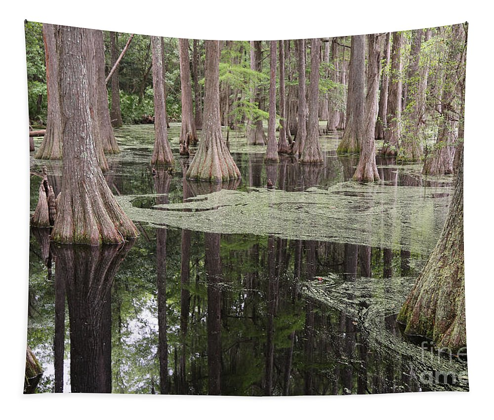 Swamp Tapestry featuring the photograph Swirls In The Swamp by Carol Groenen