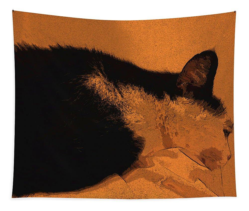 Cat Tapestry featuring the digital art Taddeo Pensa by Tila Gun