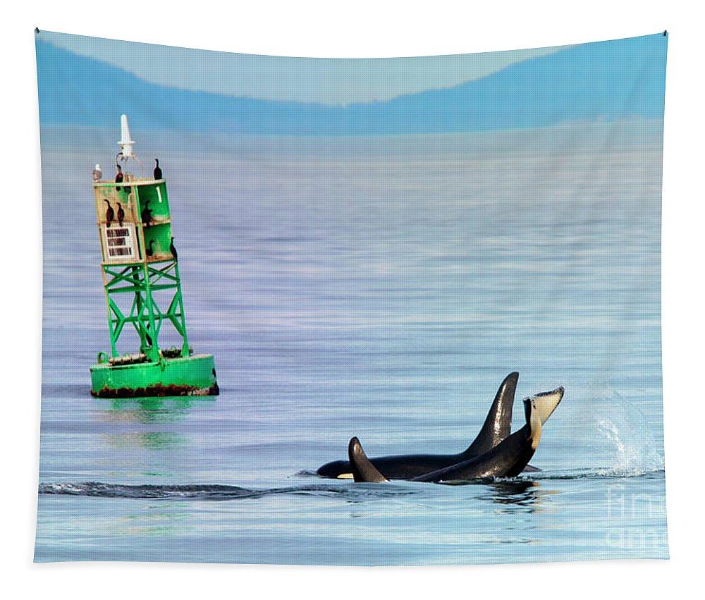 Orca Tapestry featuring the photograph Tail Slap by Mike Dawson