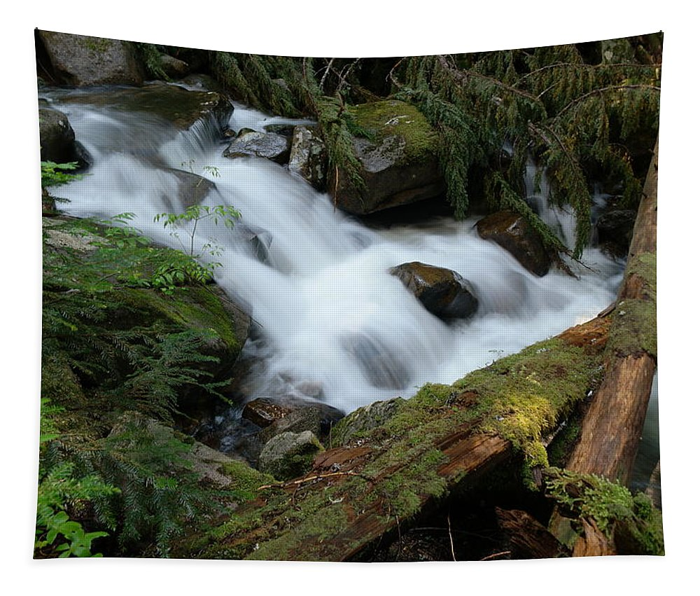 River Tapestry featuring the photograph Talapus Creek by Jeff Swan