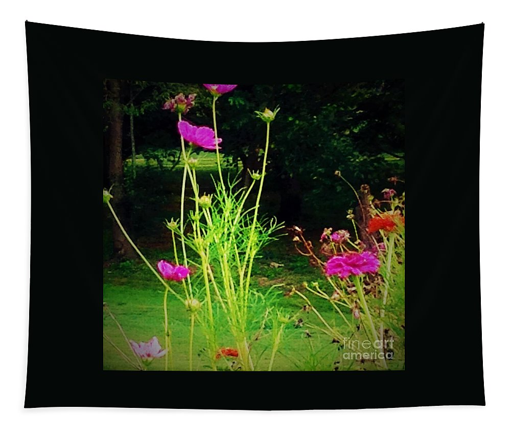Flowers Tapestry featuring the photograph Tall Wispy Flowers In Pink by Debra Lynch
