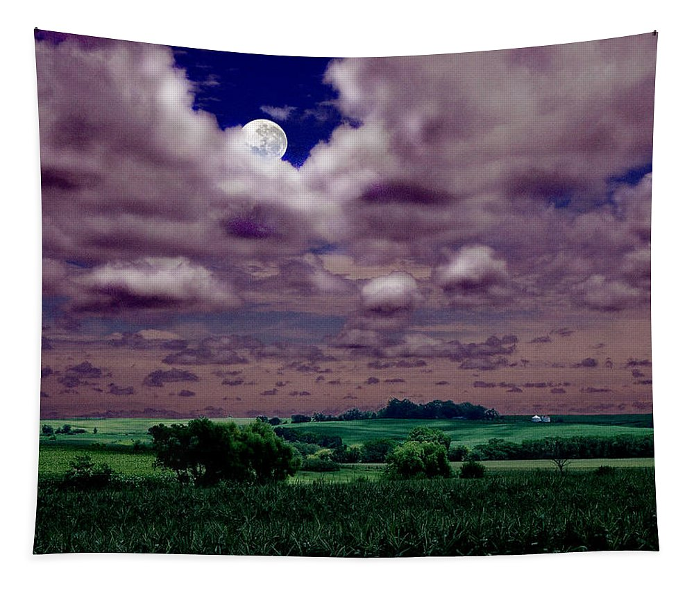 Landscape Tapestry featuring the photograph Tarkio Moon by Steve Karol
