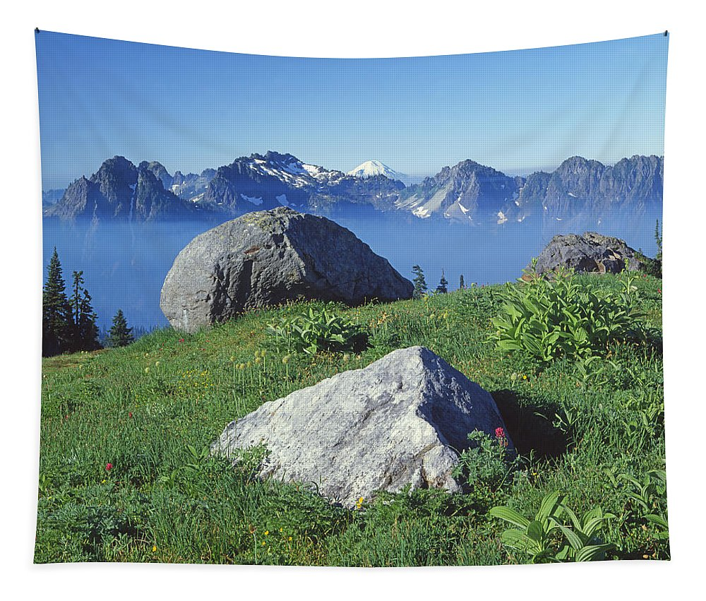 Tatoosh Range Tapestry featuring the photograph 1m4862-tatoosh Range And Mt. St. Helens by Ed Cooper Photography