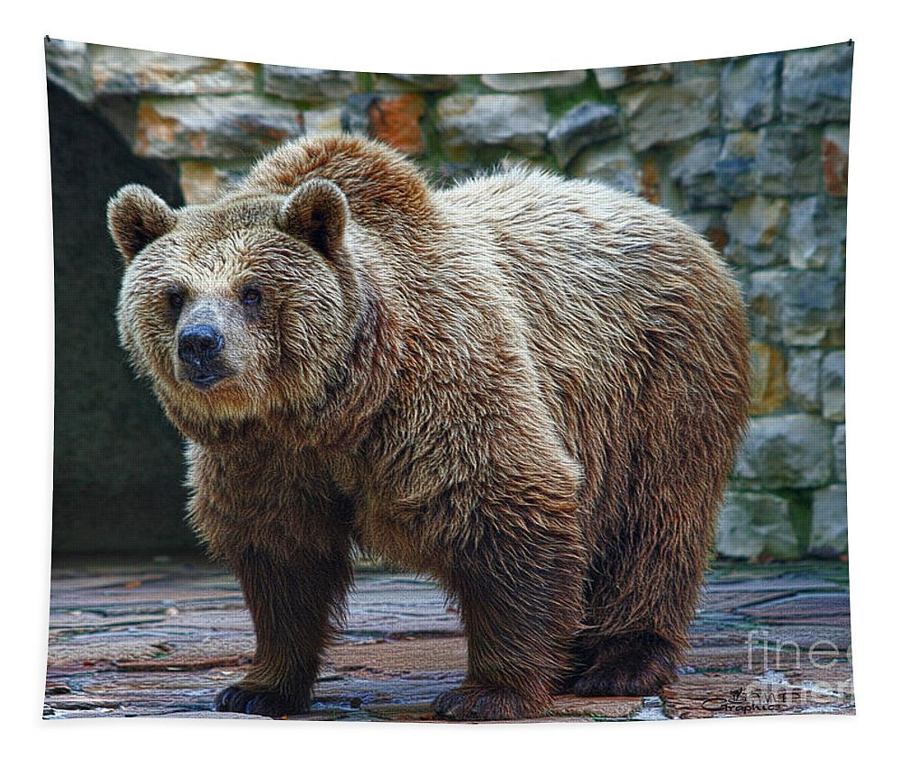 Bear Tapestry featuring the photograph Teddy Bear Alive by Jutta Maria Pusl