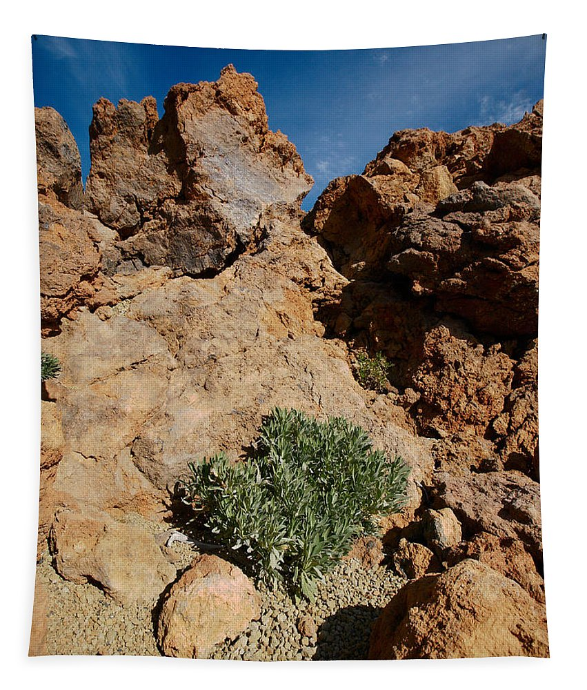 Landscape Tapestry featuring the photograph Teide Nr 10 Something Green by Jouko Lehto