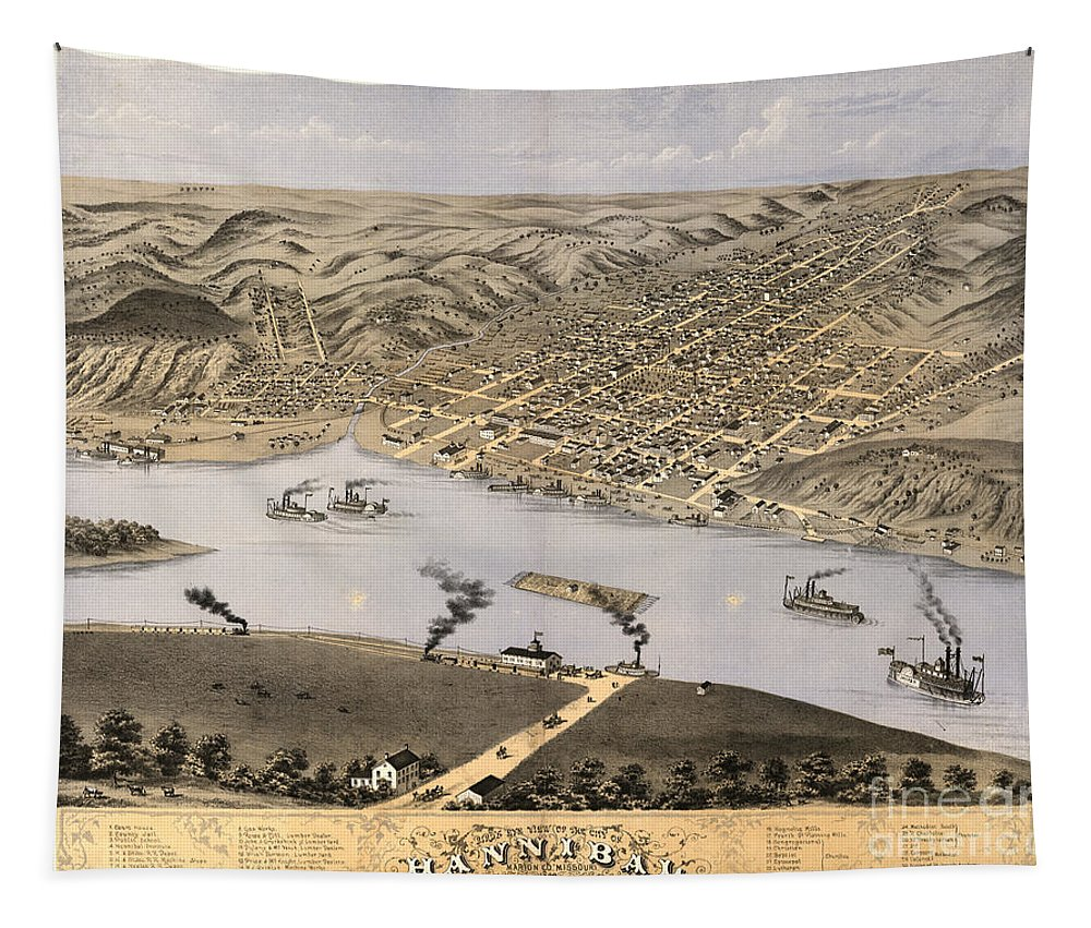 Hannibal Tapestry featuring the photograph Hannibal by Dale Powell