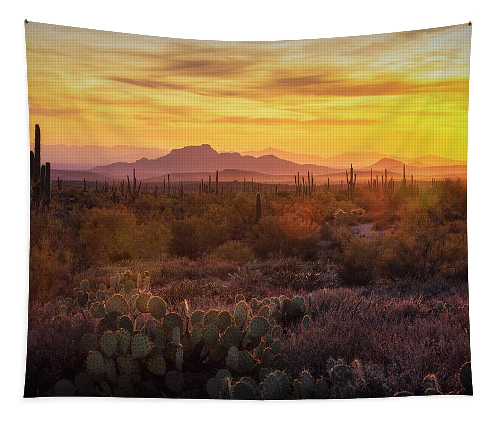 Sunset Tapestry featuring the photograph That Golden Light by Saija Lehtonen