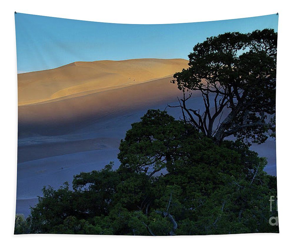 Great Sand Dunes Tapestry featuring the photograph The Anthill by Jim Garrison