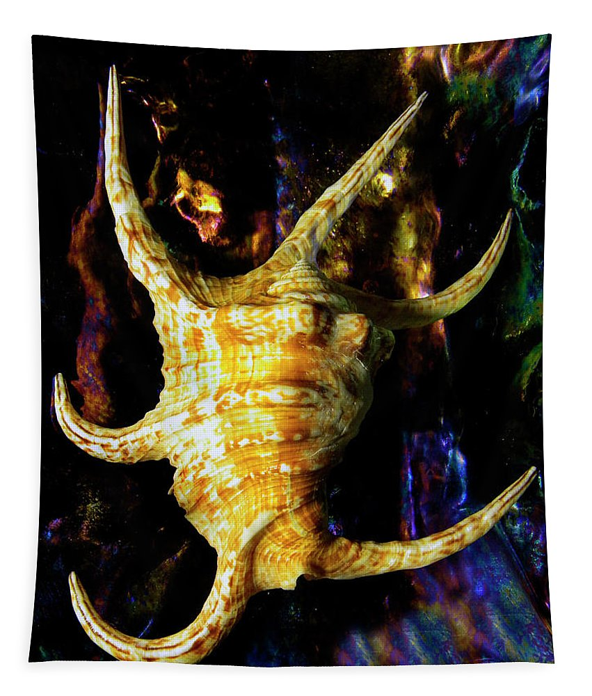 Frank Wilson Tapestry featuring the photograph The Arthritic Spider Conch Seashell by Frank Wilson