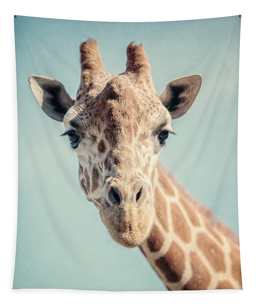 Giraffe Tapestry featuring the photograph The Baby Giraffe by Lisa Russo