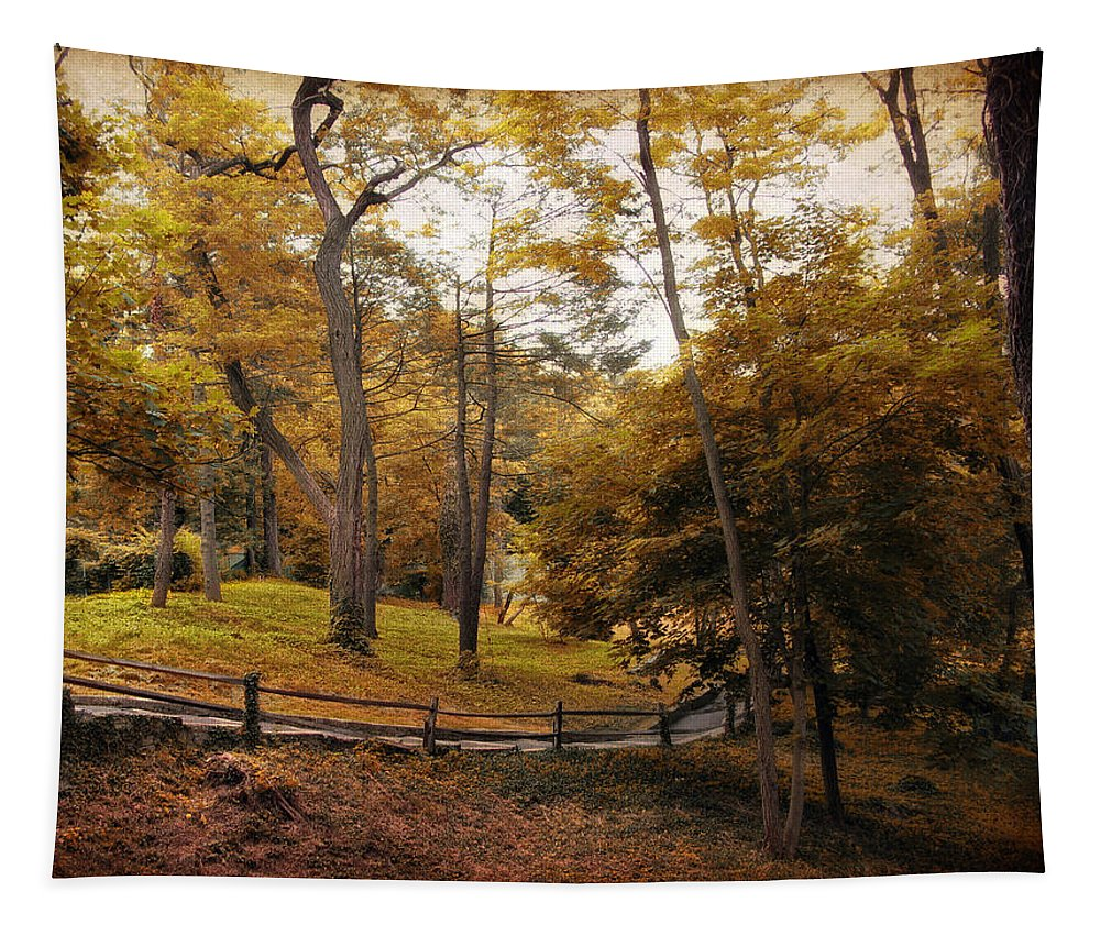 Autumn Tapestry featuring the photograph The Back Way by Jessica Jenney