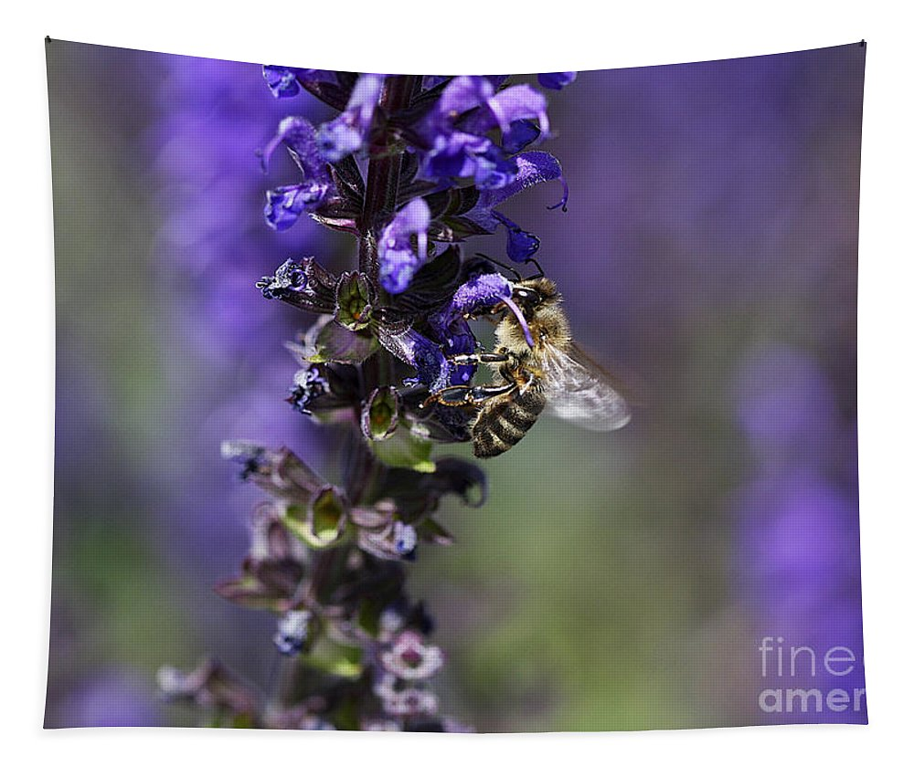 Bee Tapestry featuring the photograph The Bee Hover by Deborah Benoit