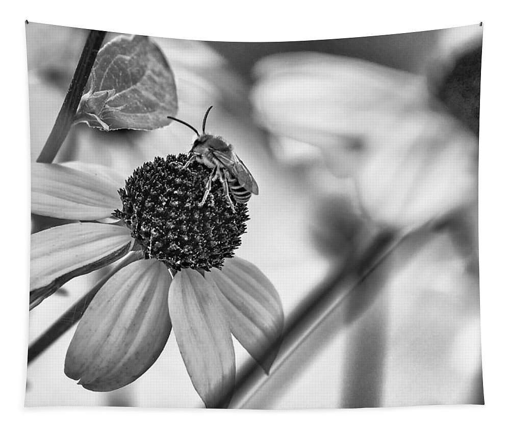 Steve Harrington Tapestry featuring the photograph The Best Gardener - Bw by Steve Harrington