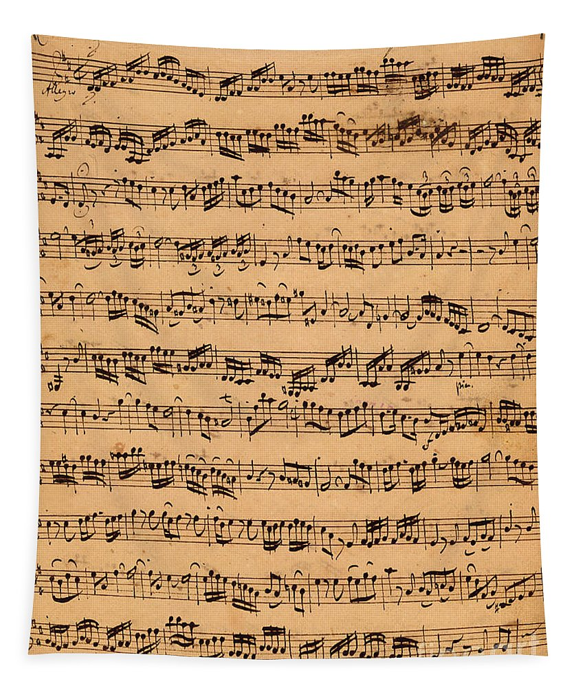 Music; Musician; Score; Composition; Composer; Classical Music; Baroque; Notes; Note; Notation; Handwritten; Manuscript; Handwriting; First Violin Tapestry featuring the drawing The Brandenburger Concertos by Johann Sebastian Bach