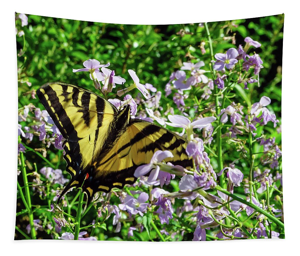 Canadian Tiger Swallowtail Tapestry featuring the photograph The Canadian Tiger Swallowtail by Tikvah's Hope
