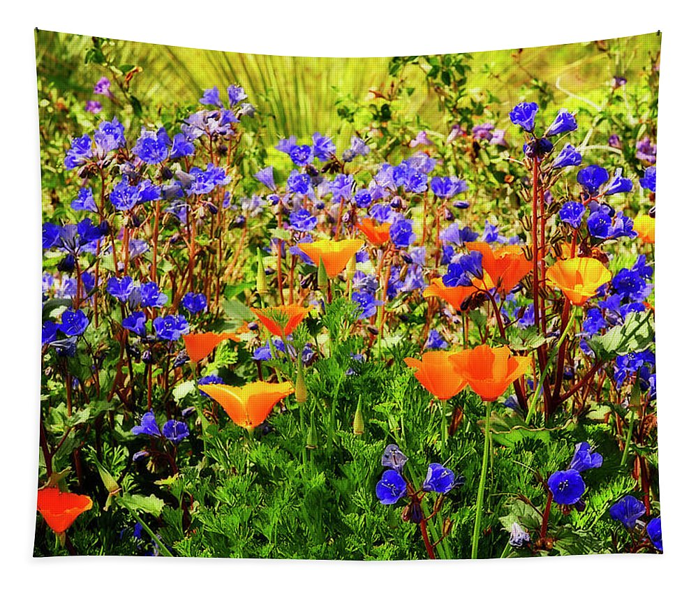 Arizona Tapestry featuring the photograph The Colors Of Spring by Saija Lehtonen