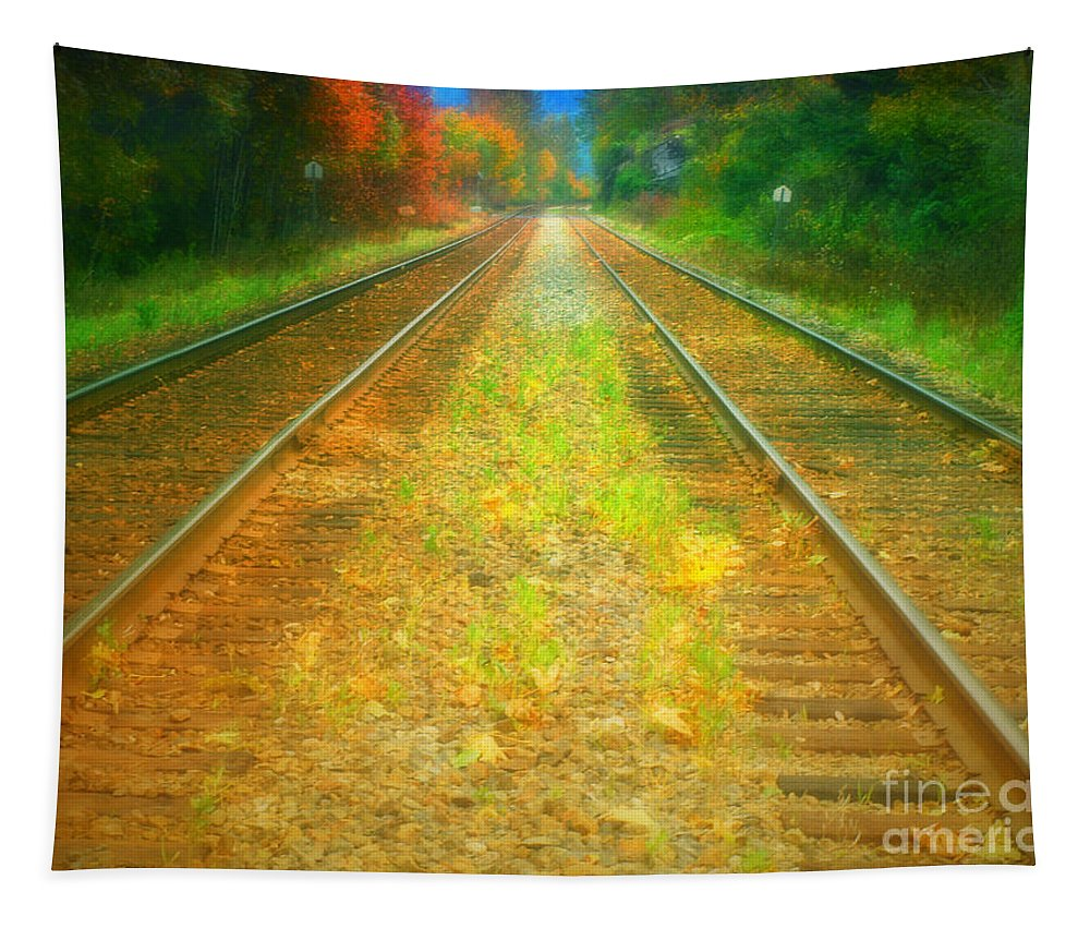 Autumn Tapestry featuring the photograph The Colour Along The Tracks by Tara Turner