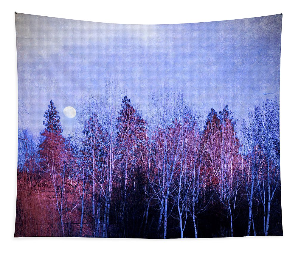 Moon Tapestry featuring the photograph The Colours Of The Moon by Tara Turner