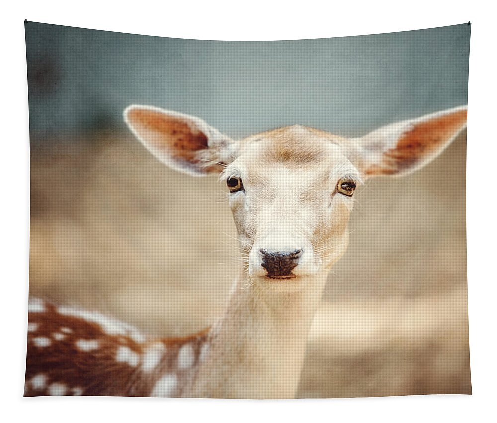 Deer Tapestry featuring the photograph The Deer by Lisa R