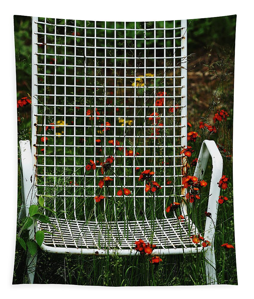 Outdoor Chair Tapestry featuring the photograph The Devils Chair by Debbie Oppermann