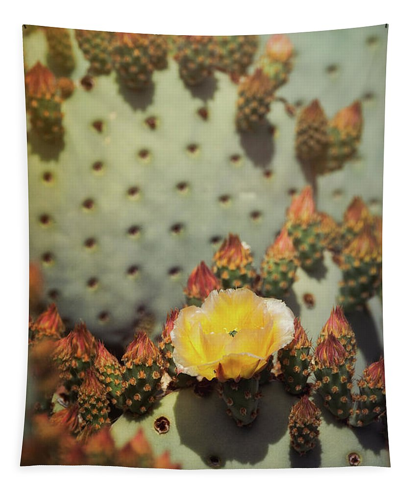 Golden Prickly Pear Cactus Tapestry featuring the photograph The First To Open by Saija Lehtonen