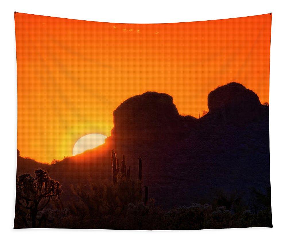 Sunset Tapestry featuring the photograph The Golden Light Of The Sonoran Desert by Saija Lehtonen