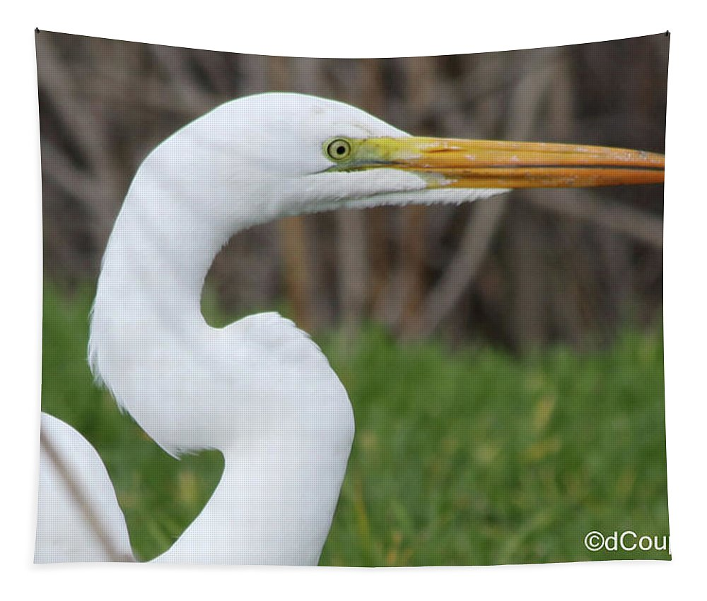 Egret Tapestry featuring the photograph The Great White Egret by Donna Coupe