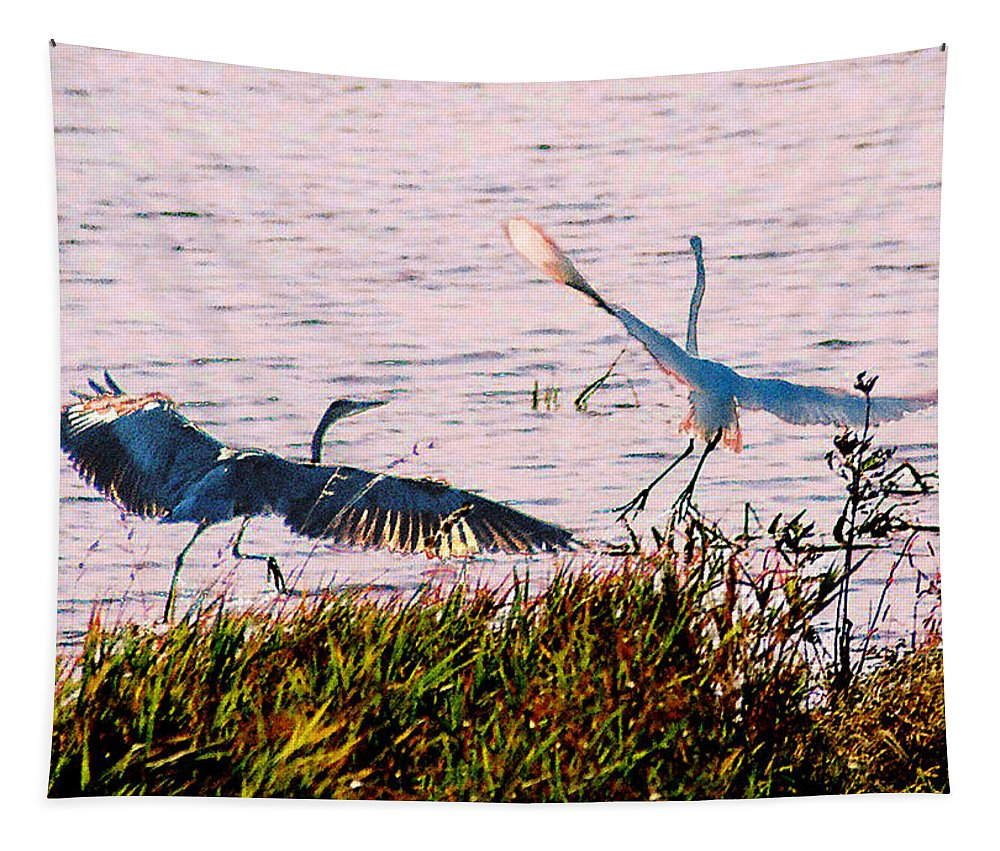 Wild Life Tapestry featuring the photograph The Heron and the Egret by Steve Karol
