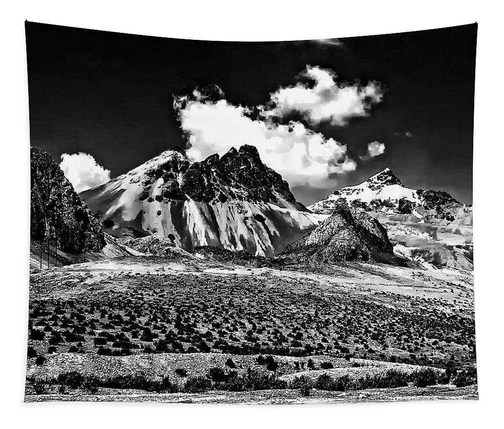 Peru Tapestry featuring the photograph The High Andes Monochrome by Steve Harrington