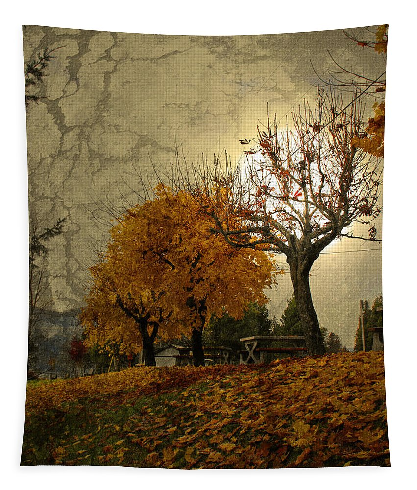 Autumn Tapestry featuring the photograph The Holder Of Light by Tara Turner