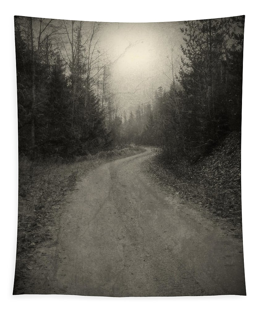 Road Tapestry featuring the photograph The Light At The End Of The Road by Tara Turner