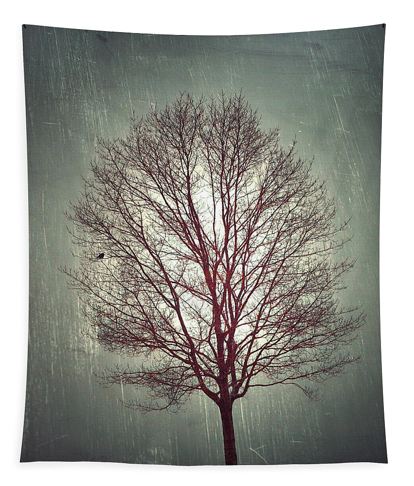 Tree Tapestry featuring the photograph The Light Within by Tara Turner