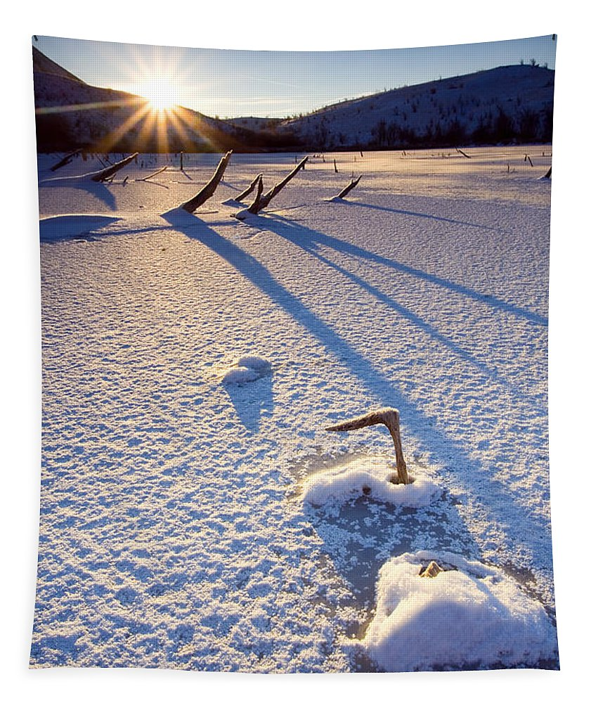 Sunrise Tapestry featuring the photograph The Long Shadows Of Winter by Mike Dawson
