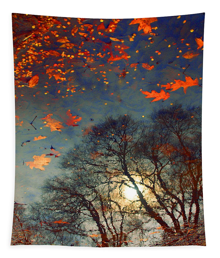 Puddle Tapestry featuring the photograph The Magic Puddle by Tara Turner
