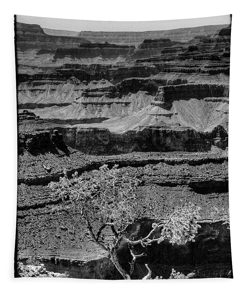 Grand Canyon Tapestry featuring the photograph The Magnificent Grand Canyon by David Patterson