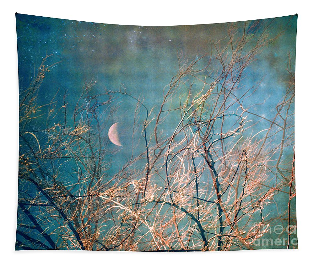 Moon Tapestry featuring the photograph The Messy House Of The Moon by Tara Turner