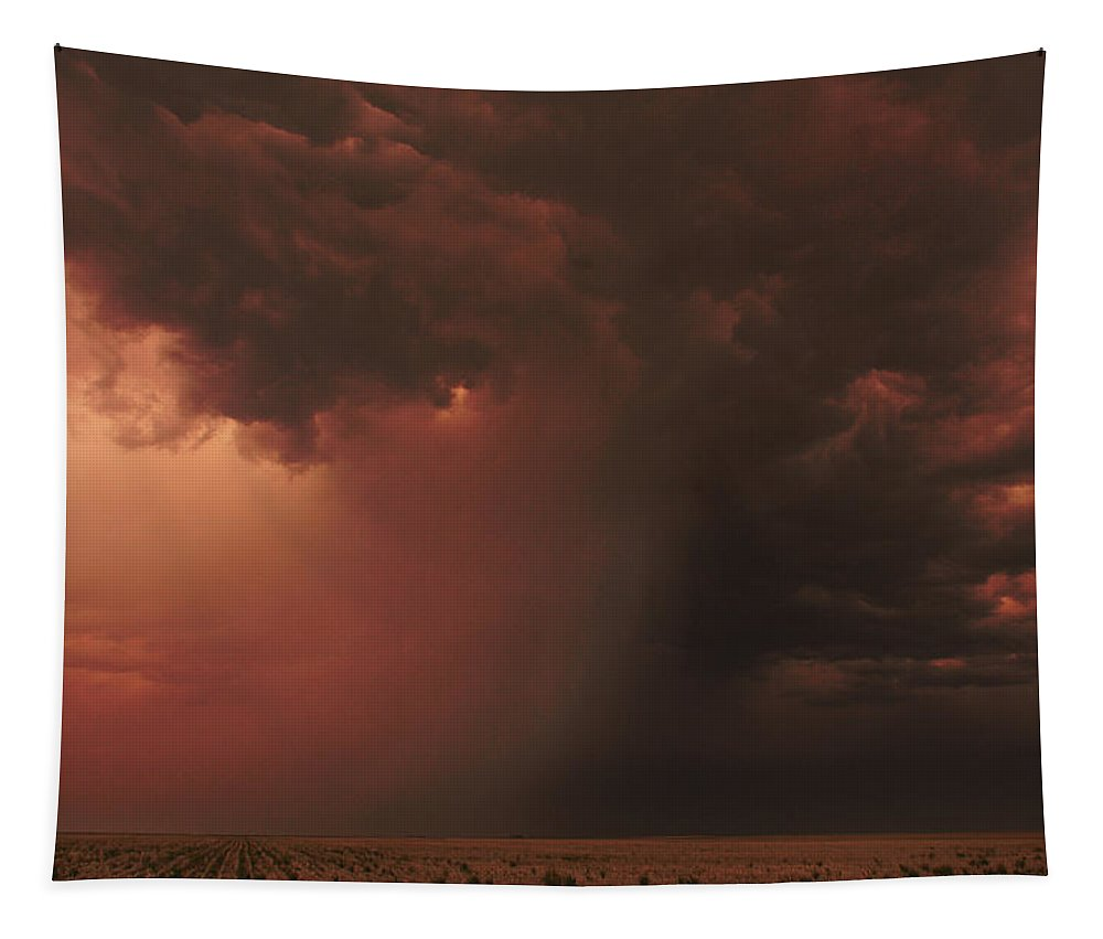 Microburst Tapestry featuring the photograph The Microburst by Brian Gustafson
