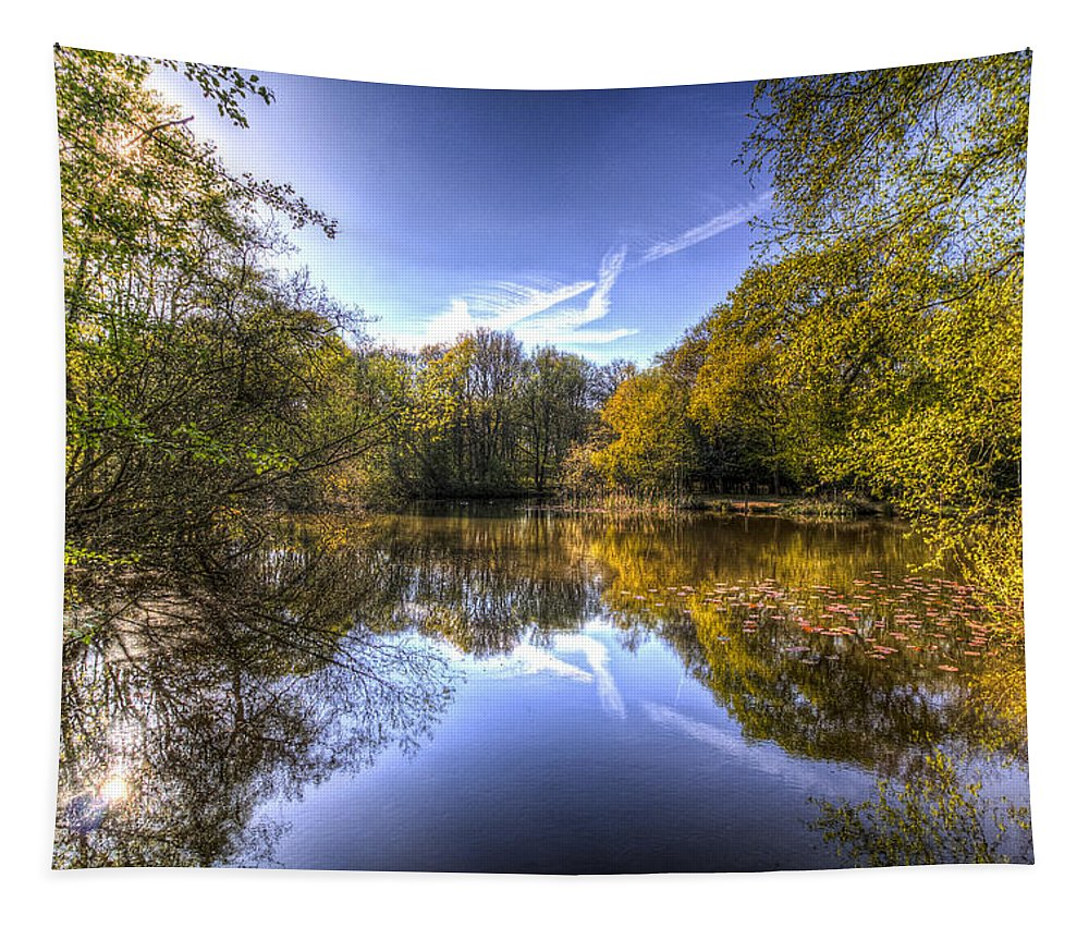 Pond Tapestry featuring the photograph The Mirror Pond by David Pyatt