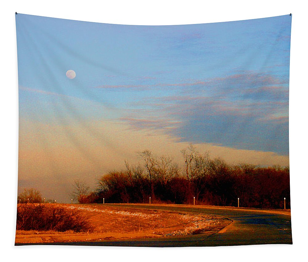 Landscape Tapestry featuring the photograph The On Ramp by Steve Karol