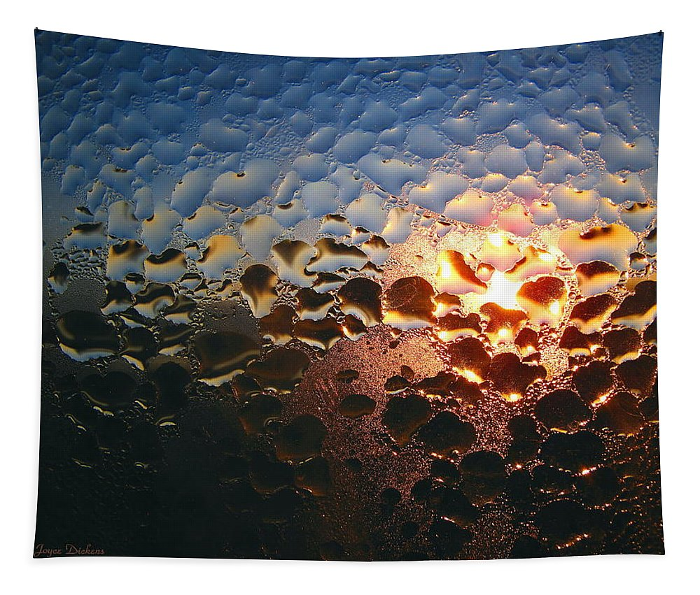Dew Tapestry featuring the photograph The Other Side by Joyce Dickens