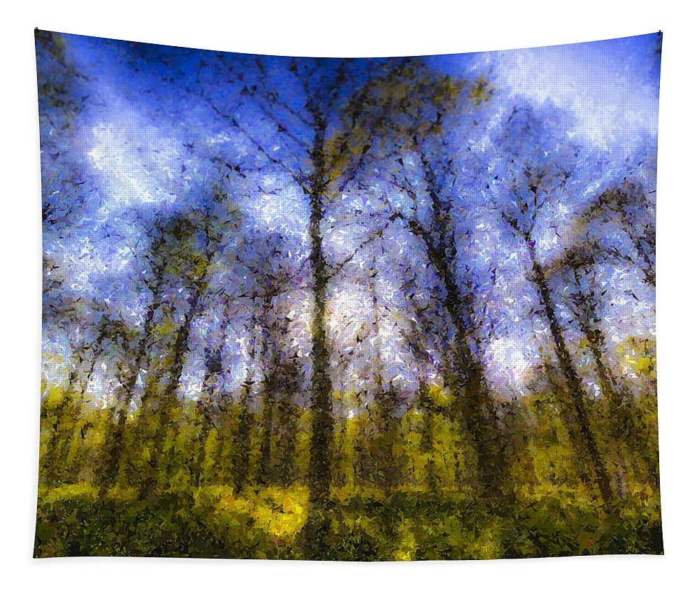 Pastel Tapestry featuring the photograph The Pastel Forest by David Pyatt