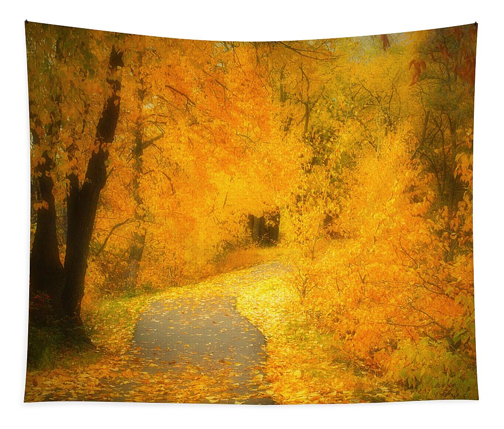 Autumn Tapestry featuring the photograph The Pathway Of Fallen Leaves by Tara Turner