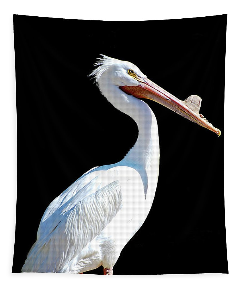 Pelican Tapestry featuring the photograph The Pelican by Saija Lehtonen