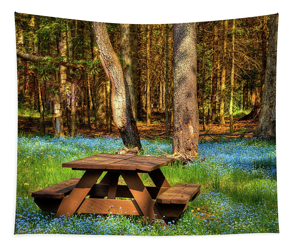 The Perfect Picnic Spot Tapestry featuring the photograph The Perfect Picnic Spot by David Patterson
