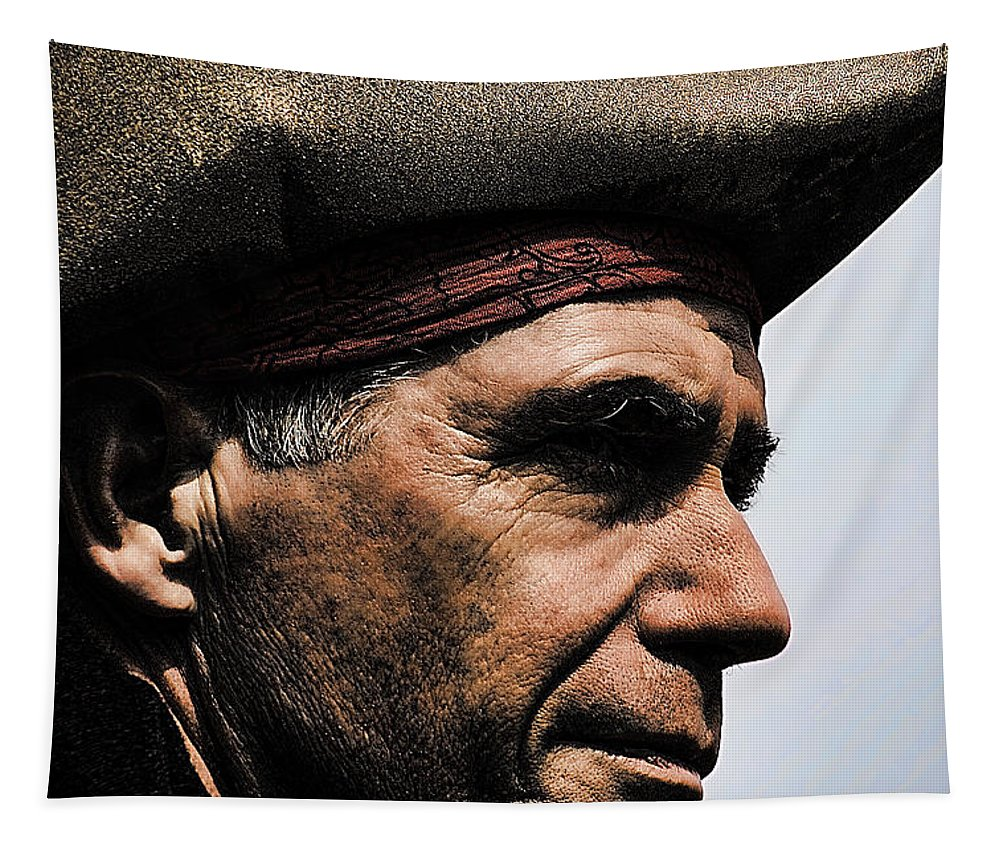 Pirate Tapestry featuring the photograph The Pirate by David Patterson