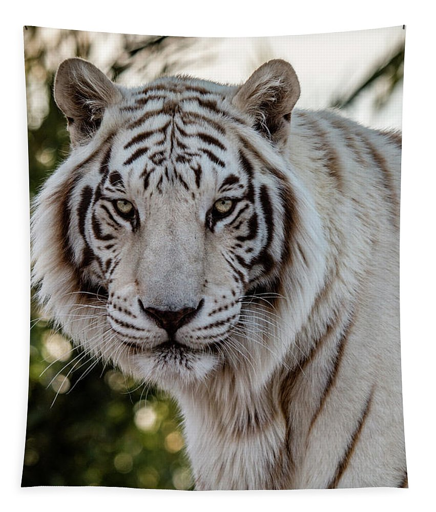 Animal Tapestry featuring the photograph The Power Within by Teresa Wilson