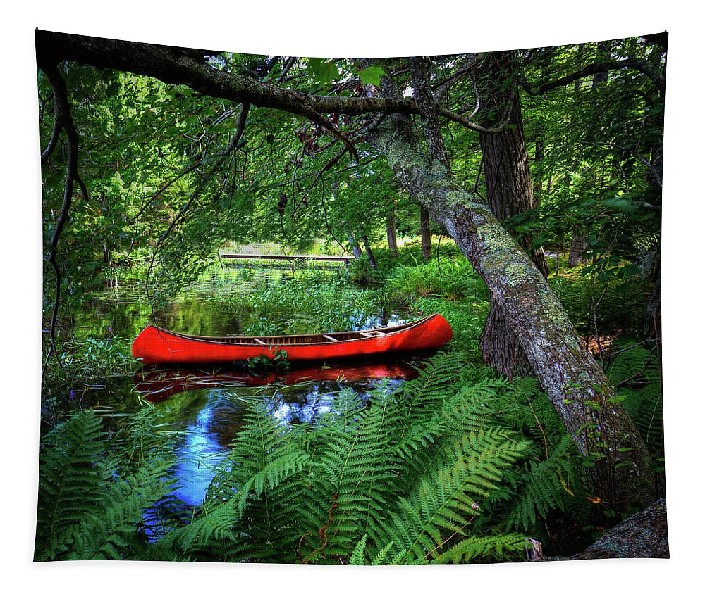 Canoe Under The Canopy Tapestry featuring the photograph The Red Canoe On The Lake by David Patterson